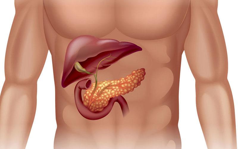 Влияние бариатрии на экзокринную функцию поджелудочной железы
