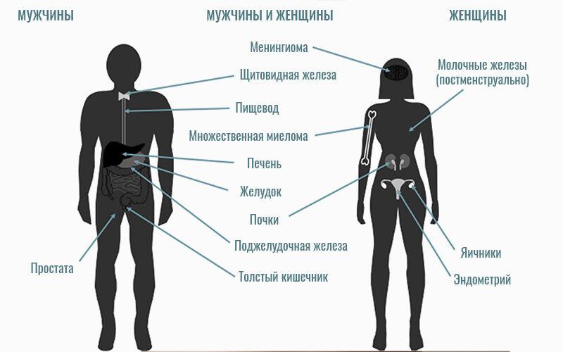 Ожирение связано с повышенным риском развития 10 видов рака